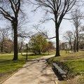 City Park – Projets