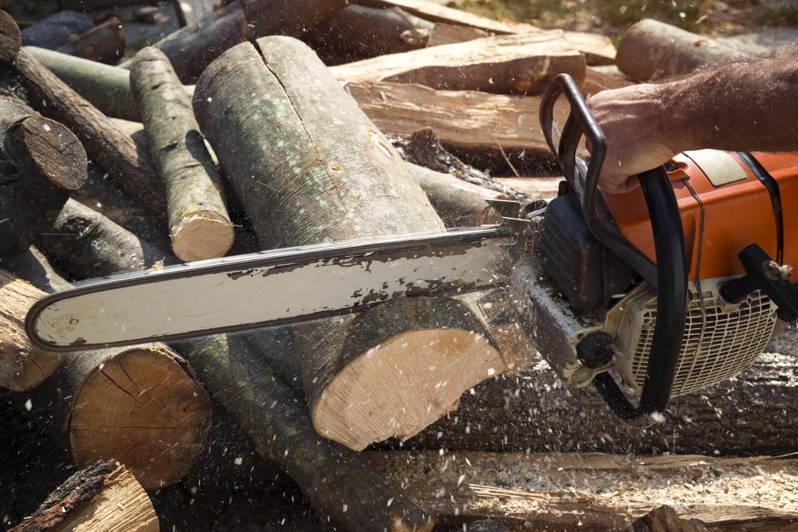 Tronçonneuse découpant un arbre et causant une nuisance sonore pour le voisinage